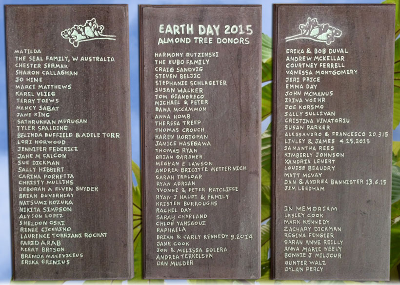Earth Day 2015 Almond tree donor plaques