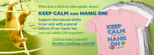 What does a sloth do when upside-down? Keep Calm and hang on! Support the rescued sloths in our care with a special edition of our classic tee. let's all hand on together! Go to https://www.bonfire.com/keep-calm-50/